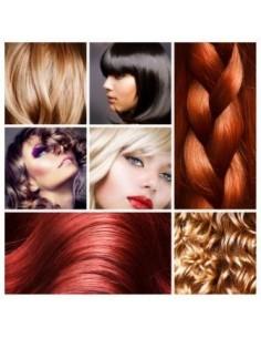 fichier salons de coiffure Belgique