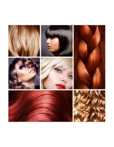 Fichier de prospection BtoB des salons de coiffure - Belgique