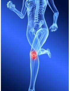 Ostéopathes Suisse