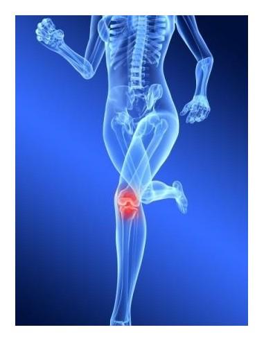 Base emails et adresses des ostéopathes Suisse